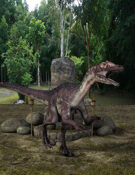 Ravasaur (Utahraptor)