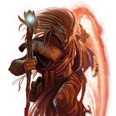 Dragonborn wizard.