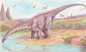 800px-Apatosaurus33