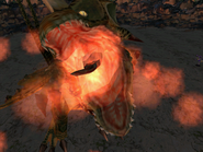 Pso dragon gasp