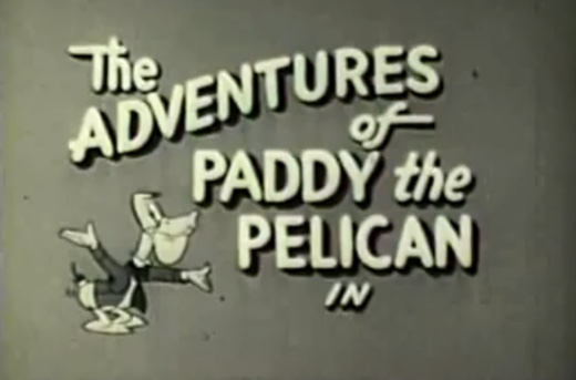 File:Paddy the pelican.jpg