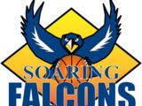 Adamson Falcons