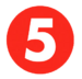 The 5 Network Logo 2018