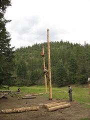 Spar Pole Climbing
