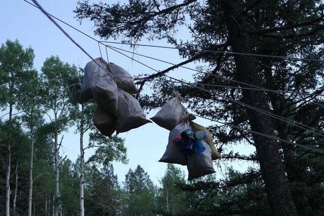 File:Bear bags.JPG