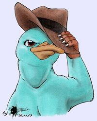 Perry, the platypus, by K-Vampio