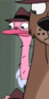 File:Ostrich agent.png