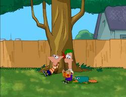 PF under a tree
