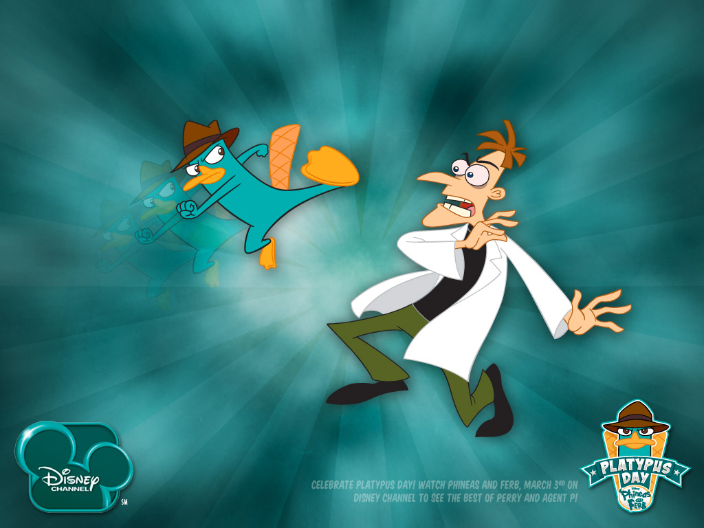 image platypus day wallpaper jpg phineas and ferb wiki