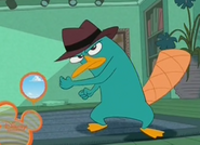 Perry break in