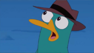 Perry XD