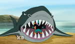 Lald027 Shark opens mouth