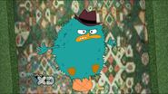 Poofed trapped perry