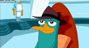 Perry smiles