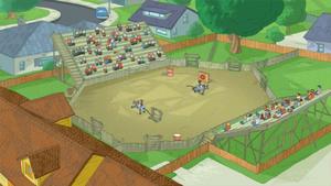 Backyard rodeo