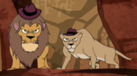 Lion and lioness agent