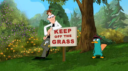 Doof looks at 'Keep Off The Grass'