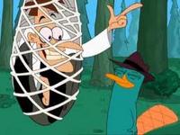 Phineas und Ferb 48