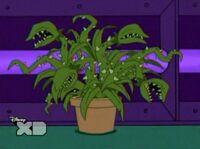 Plant minion