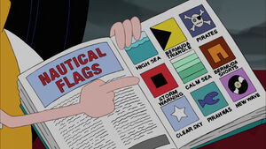 What the flags mean