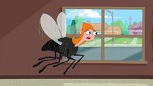 Candace fly trying to call mom