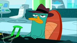 Candace Loses Her Head Perry Disappointed