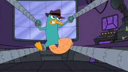 Perry trapped