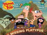 The Missing Platypus
