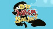 Dr Ninja Baljeet