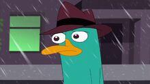 Perry sadly walking away