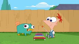 Baby Perry and Phineas enjoy playing music