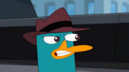 Perry chatters to wake Doofenshmirtz