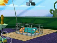 Perry in cage