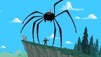 SPIDER DOOF