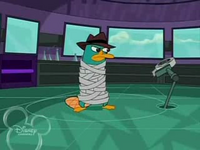 Duct Taped Platypus