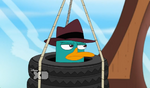 Lald020 Perry is not impressed
