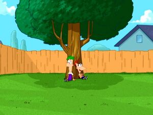 Phineas and Ferb in the backyard