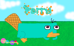 Perrywiki1