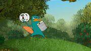 Perry Primitivo Imagem 755