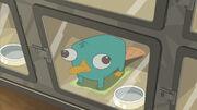 Phineas e Ferb O Filme - Através da 2ª Dimensão (Imagem 57)