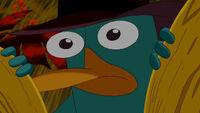 Perry encontrado