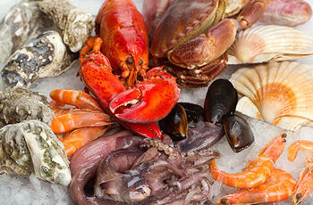 Shellfish-and-Crustaceans