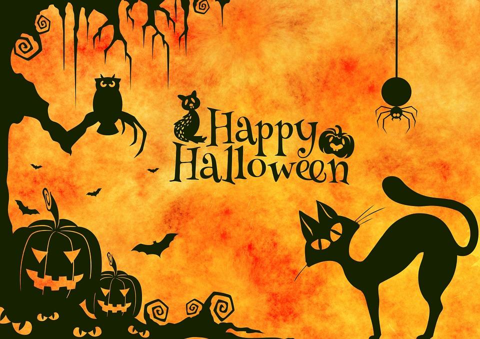 halloween2 - Phobia Halloween