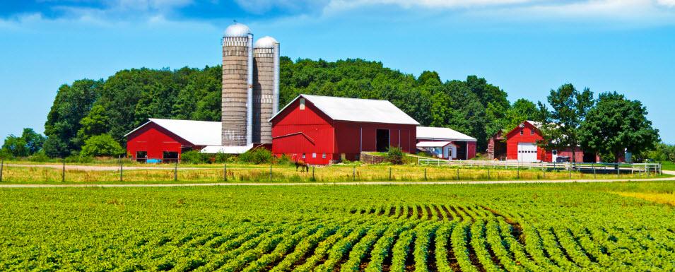 image farm jpg phobia wiki fandom powered by wikia