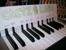 2011 Cacti Radio Sound Board