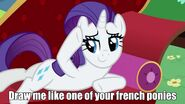 French ponies
