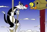 Sylvester4