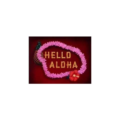 Le <i>title card</i> de <i>Hello Aloha</i>.
