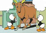 Roscoe (renne) avec Riri, Fifi et Loulou Duck