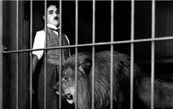 Chaplin lion